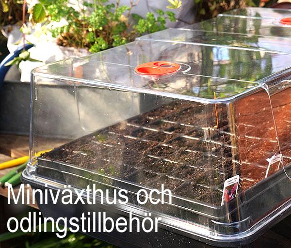 Miniväxthus och odlingstillbehör