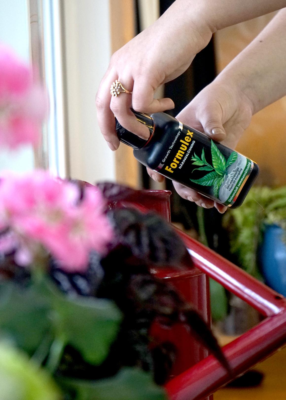Formulex växtnäring med kvalitet för proffs och hobbyodlare