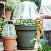 Miniväxthus, Green Basics, grön, 30 cm