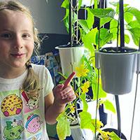 Odling med barn med Nutritower odlingstorn