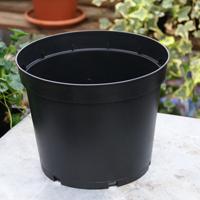 Plastkruka 4 Liter, 3-pack-plastkruka