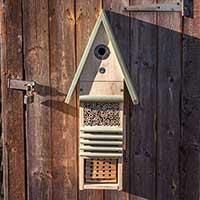Fågel- och insektshotell upphängd på vägg