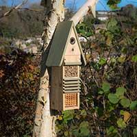 Uppsatt fågel- och insektshotell