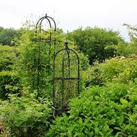 Växtstöd Obelisk Elegance svart, mellan, Smidesstöd för klängväxter, Obelisk Elegance