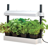 Liten odlingsstation, vit-Micro Growlight Garden