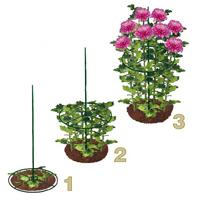 Växtstöd ring, 30 cm, 2-pack, Växtstödsring för perenner mfl