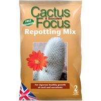 Cactus Focus - kaktusjord, 2 liter, Cactus and Succulent Focus Repotting Mix - kaktusjord