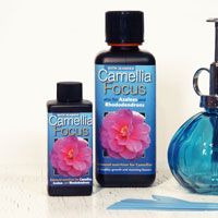 Kamelianäring - Camellia Focus, 100 ml ,