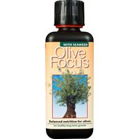 Olivnäring - Olive Focus, 300 ml -Olivnäring - gödning för oliver