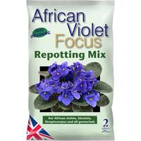 African Violet jord, 2 liter-African Violet Focus Repotting Mix - Specialjord för St Paulia