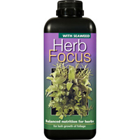 Örtnäring - Herb Focus, 500ml-