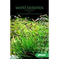 Moskitgräs BOUTELOUA gracilis-Frö till Moskitgräs