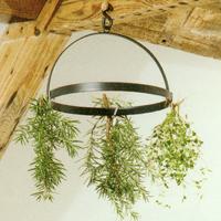 Örttork med krokar-Torkställning för upphängning av kryddor och blommor