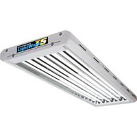 LightWave T5 4x54 W-Växtbelysning för uppdragning och övervintring av växter