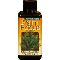 Palmnäring - Palm Focus, 100ml-Specialnäring för palmer, palmväxter