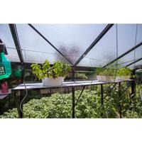 Hylla med inlägg 225 x 32 cm, lackad-Växthylla med inlägg 225 x 32 cm lackat i valfri RAL-färg