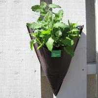 Filtkruka vägg strut-Väggodlingskruka i filt för odling på balkong och terrass
