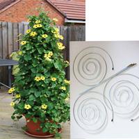 Twister - utdragbart växtstöd 3-pack-Twister växtstöd för klängande och klättrande växter