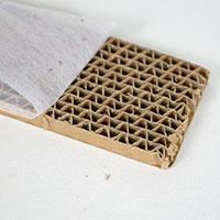 Förpackning med larver av guldögonslända