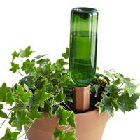 Placering av hydro wine i kruka