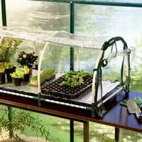 Jumbo propagator med värmematta-minidrivhus, miniväxthus, undervärme