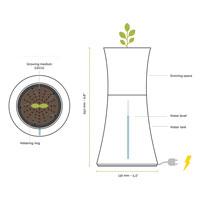 Förklaring av Botaniums olika delar