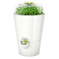 Fresh Herbs självvattnande örtkruka med lock, 13x21 cm, vit