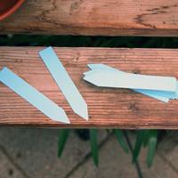 Plantetiketter 50-pack - Blå, Växtetiketter, blå