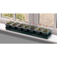 Miniväxthus med bevattning för fönsterbrädan - 7 kupor-Miniväxthus Super 7 med bevattning och 7 separata miniväxthus