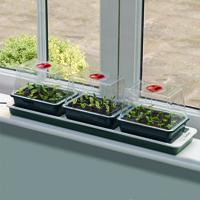 Miniväxthus 3 kupor med undervärme-miniväxthus för fönsterbrädan med undervärme
