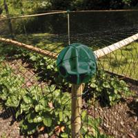 Flexible Cane - Hörn till odlingsbur-Flexible Cane - Hörn till odlingsbur