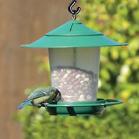 Fågelbord i grönt-fågelbord för nötter och fröblandningar