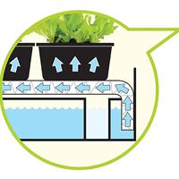 Odlingsstation - Grow light garden