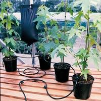 Droppbevattning - Big Drippa-droppbevattning av växter