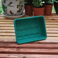 Liten sålåda utan hål, grön-Liten sålåda för odling av fröer och groddar
