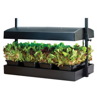 Odlingsstation med bevattningsbricka-Plats för Inomhusodling av plantor och fröer