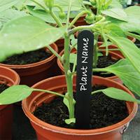 Svarta växtetiketter