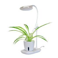 Växtlampa och läslampa för skrivbordsodling