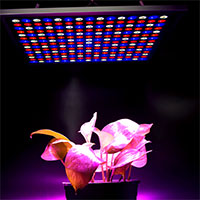 X-Grow Led-panel, 45W-Växtlampa X-Grow LED-panel 45 watt