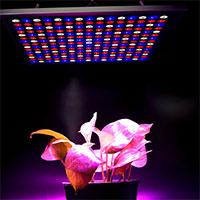 X-Grow Led-panel, 45W-Växtlampa X-Grow LED-panel 45 watt