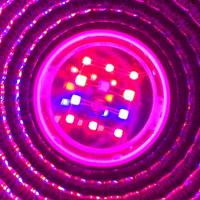 LED Growspot 15w Fullspektrum,