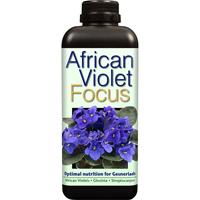African Violet Focus - Näring för St Paulia mfl, 300ml-Specialnäring för St Paulia och övriga Gesneriaceae-släktingar
