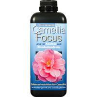 Kamelianäring - Camellia Focus, 1 L, Näring för kamelia, azalea och andra surjordsväxter