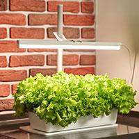 Växtlampa med lamphållare Växa över hydroodlingssystem Skördis