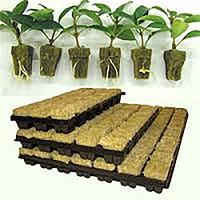 RockWool - odlingskit,