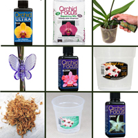 Specialpaket för orkidéer-Specialpaket för orkideskötsel