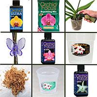 Specialpaket för orkidéer-Speciapaket för orkideskötsel