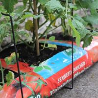 Växtstöd Cane Support till odlingssäckar, Canesupport för jordsäckar