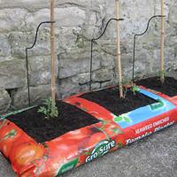 CaneSupport Växtstöd till jordsäckar