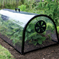 Kitchen Garden Cloche - odlingsklocka, Drivhus Kitchen Garden Cloche